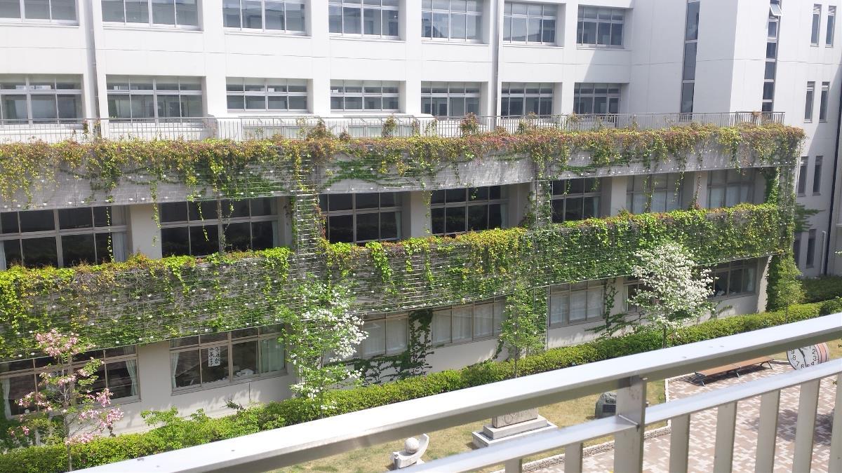 壁面緑化は騒音低減、眼精疲労回復、防火など多彩な効果があります