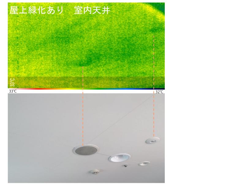 【A】 屋上緑化部分下にある室内天井です。温度は32℃程度で全体的に色の変化は僅かです。