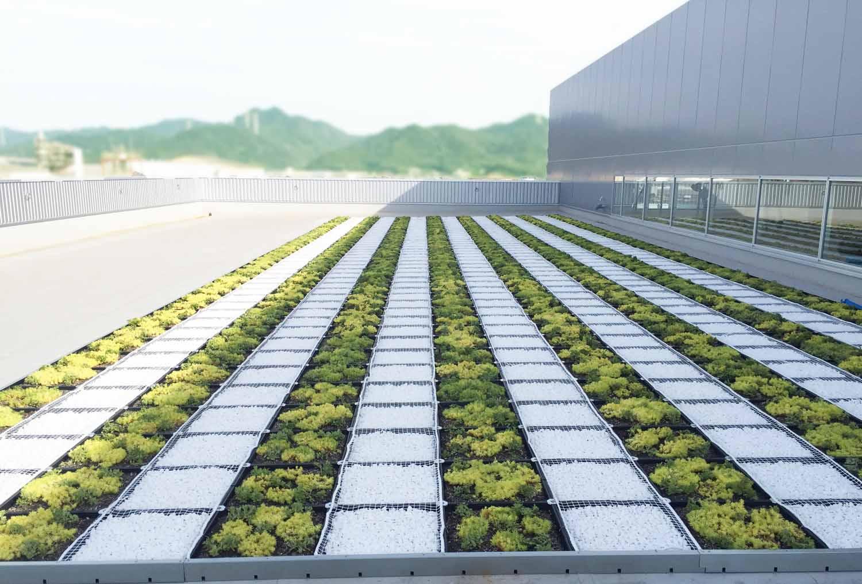 植栽が植わった緑のトレー、玉石を敷いた白いトレーを交互に敷き詰めています。