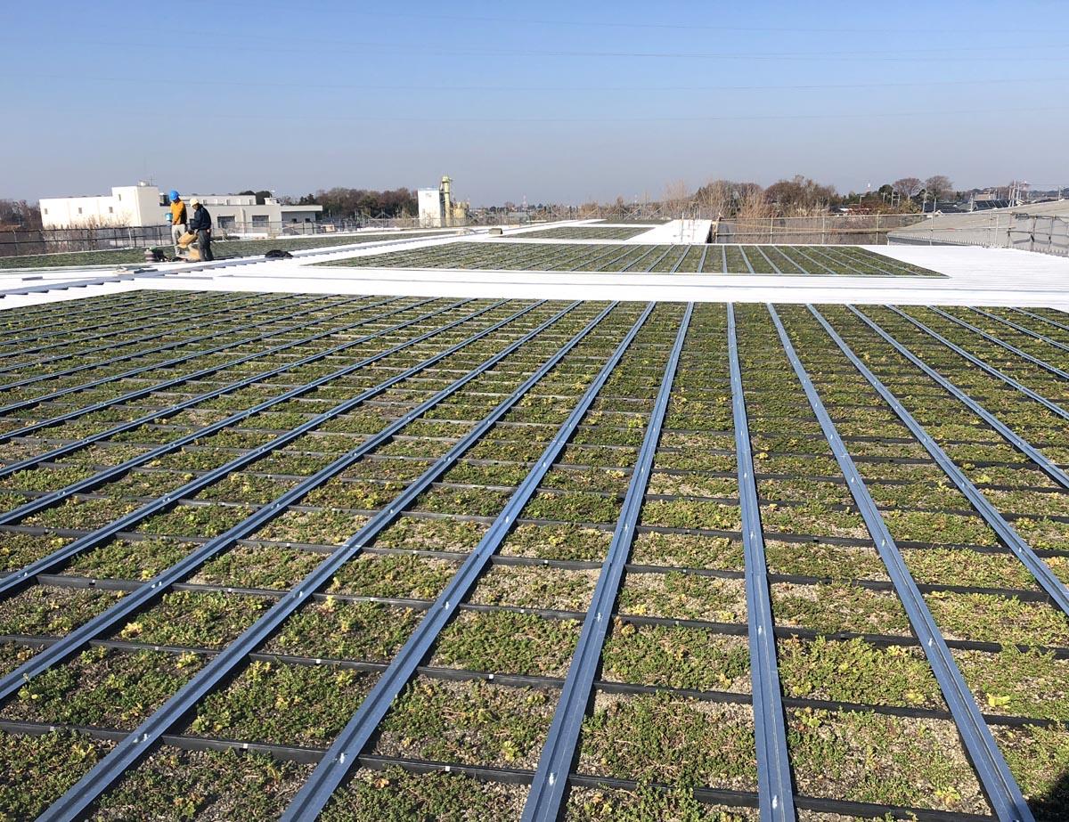 施工後の写真です。冬空の下、屋上にて春を待ちます。